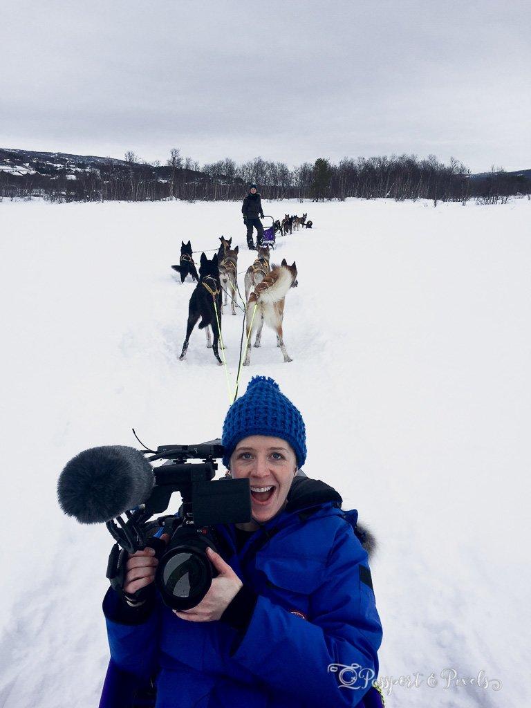 Husky sledding Geilo