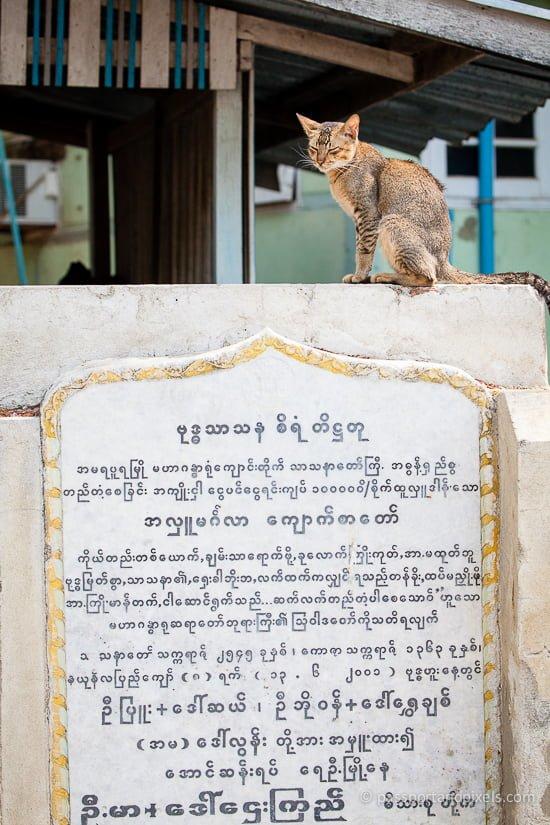 Mandalay_0035_p&p