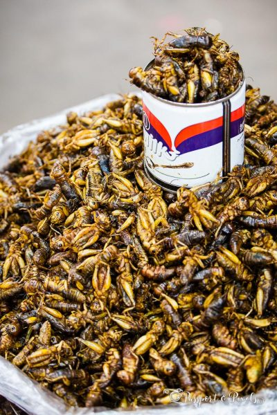 Fried Locusts, 26th Street Market, Yangon, Myanmar