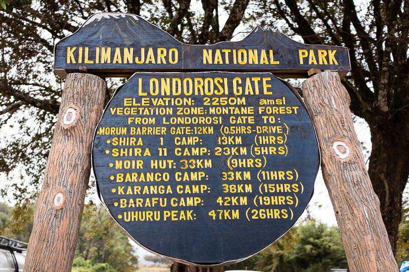 kilimanjaro_0006_pp