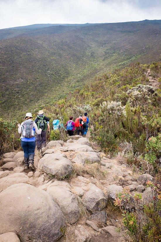 kilimanjaro_0125_pp