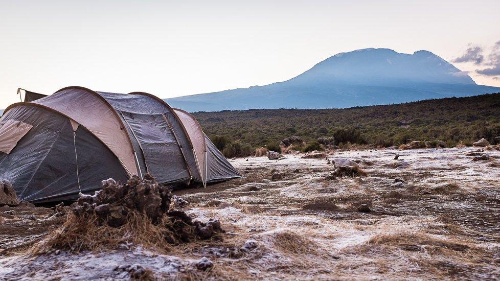 kilimanjaro_0179_pp