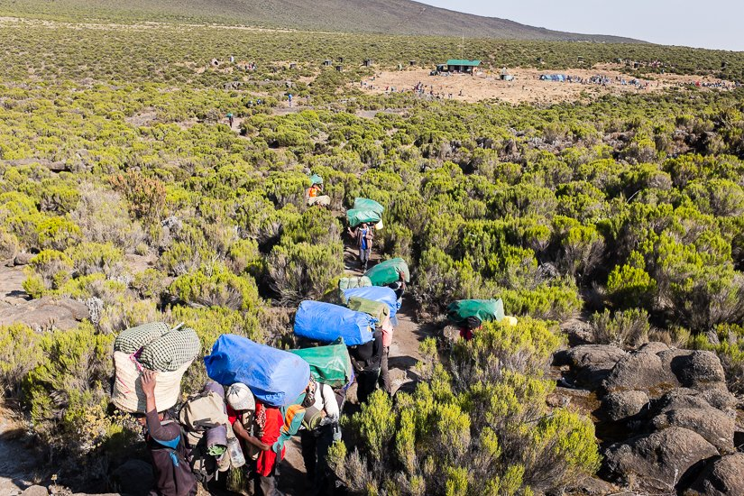 kilimanjaro_0216_pp