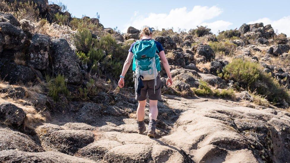 kilimanjaro_0252_pp