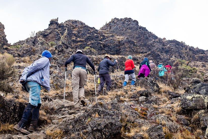 kilimanjaro_0308_pp