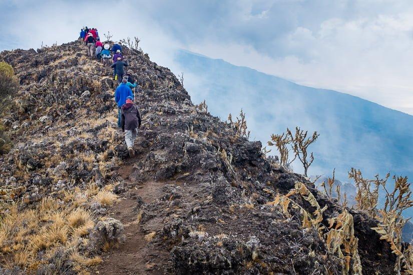kilimanjaro_0343_pp