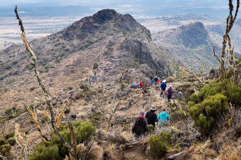 kilimanjaro_0348_pp