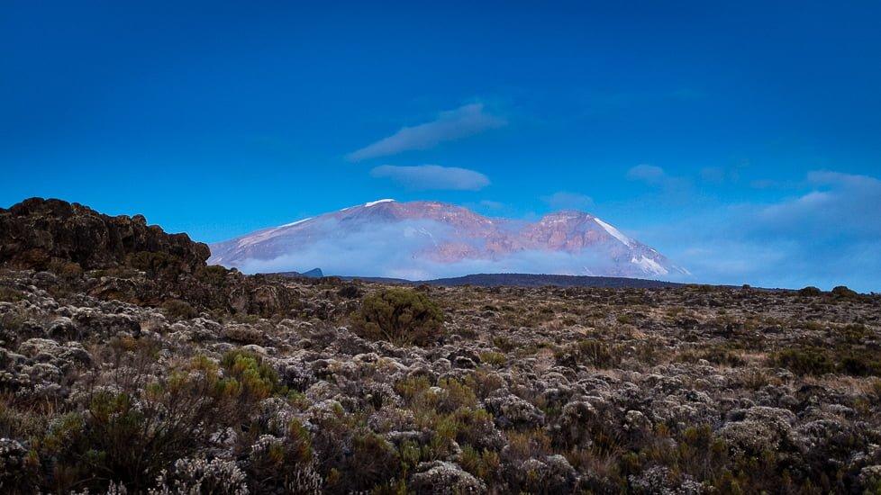 kilimanjaro_0429_pp