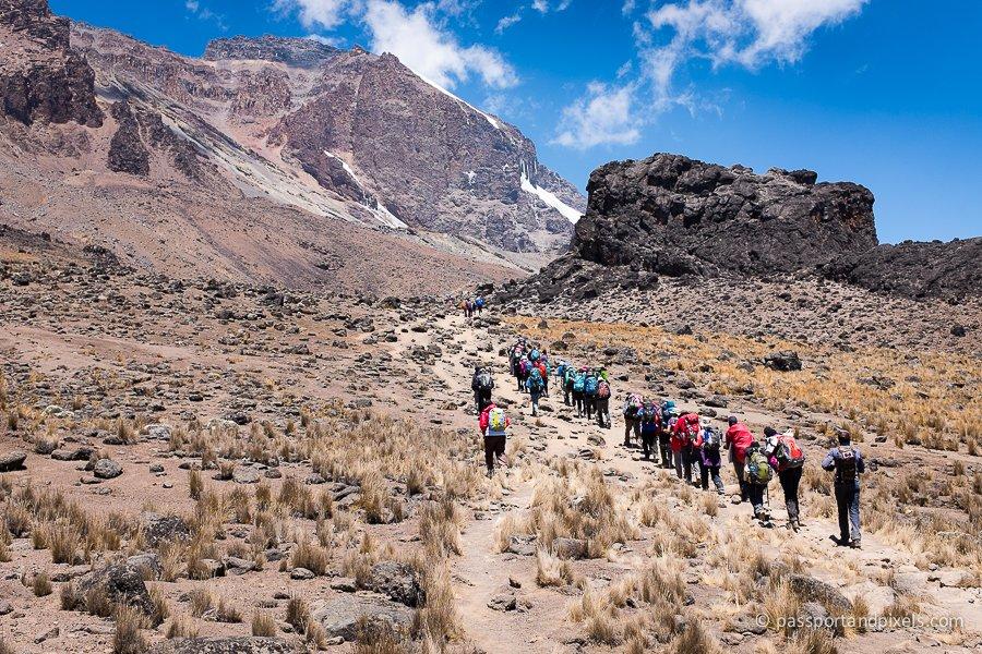 Kilimanjaro Lava Tower