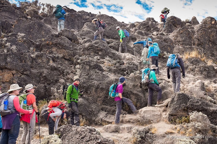 A group climbs up Kilimanjaro's Barranco Wall