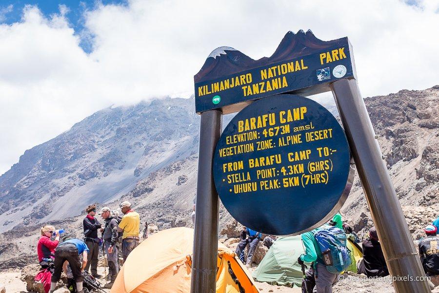 kilimanjaro_0895_pp