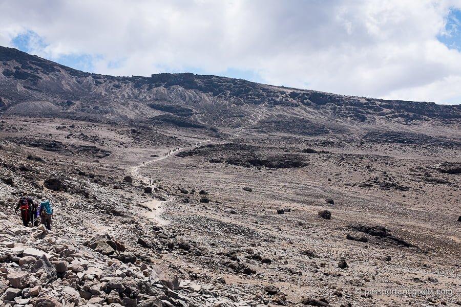 kilimanjaro_0931_pp