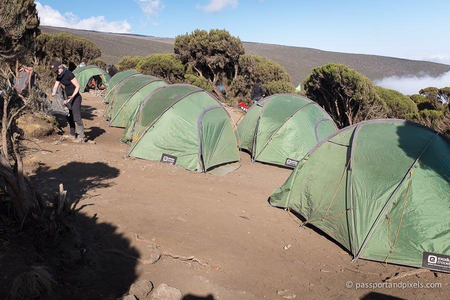 kilimanjaro_1016_pp