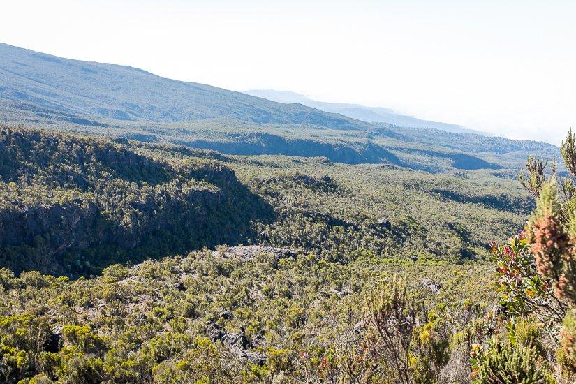 kilimanjaro_1031_pp