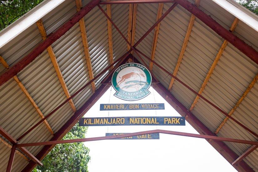 kilimanjaro_1044_pp