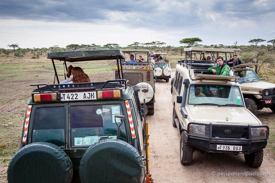 Serengeti, Tanzania safari