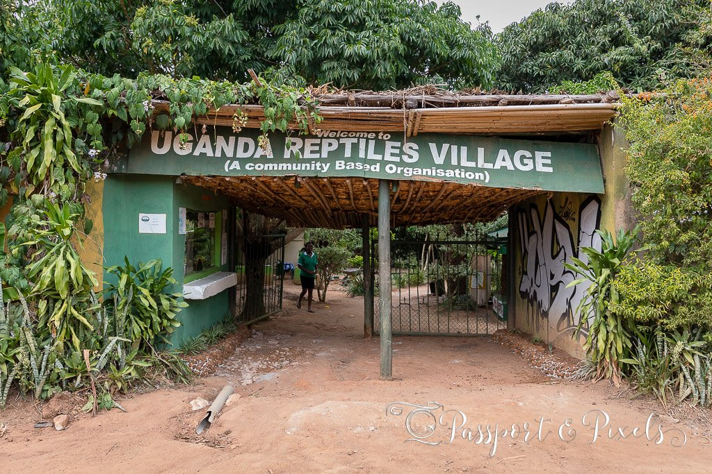 Uganda Reptiles Village