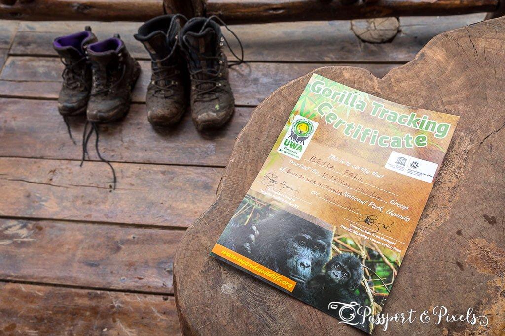 Gorilla tracking certficate