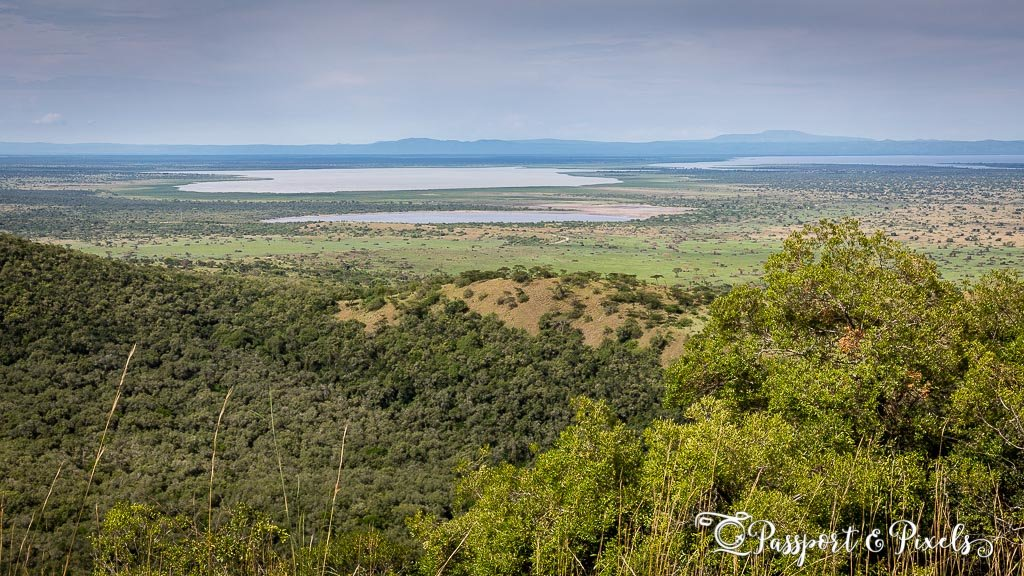 Looking out over the Albertine Rift Valley