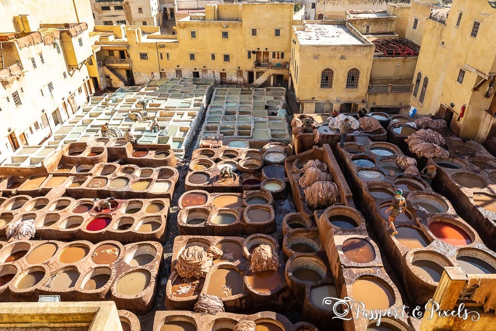 Chouara leather tannery Morocco