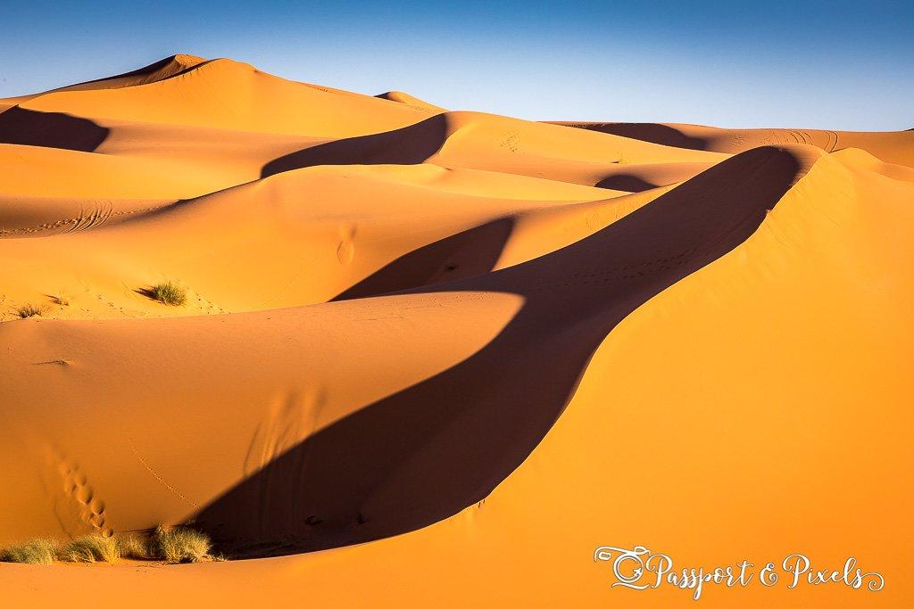 Sahara Desert pictures