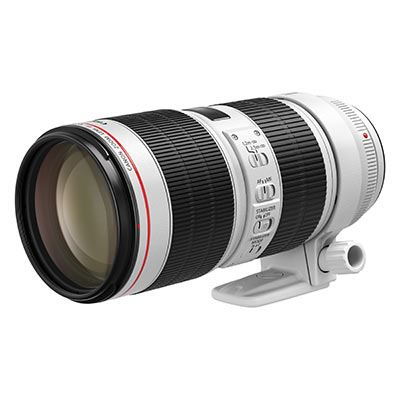 Best lens for Antarctica: Canon 70-200