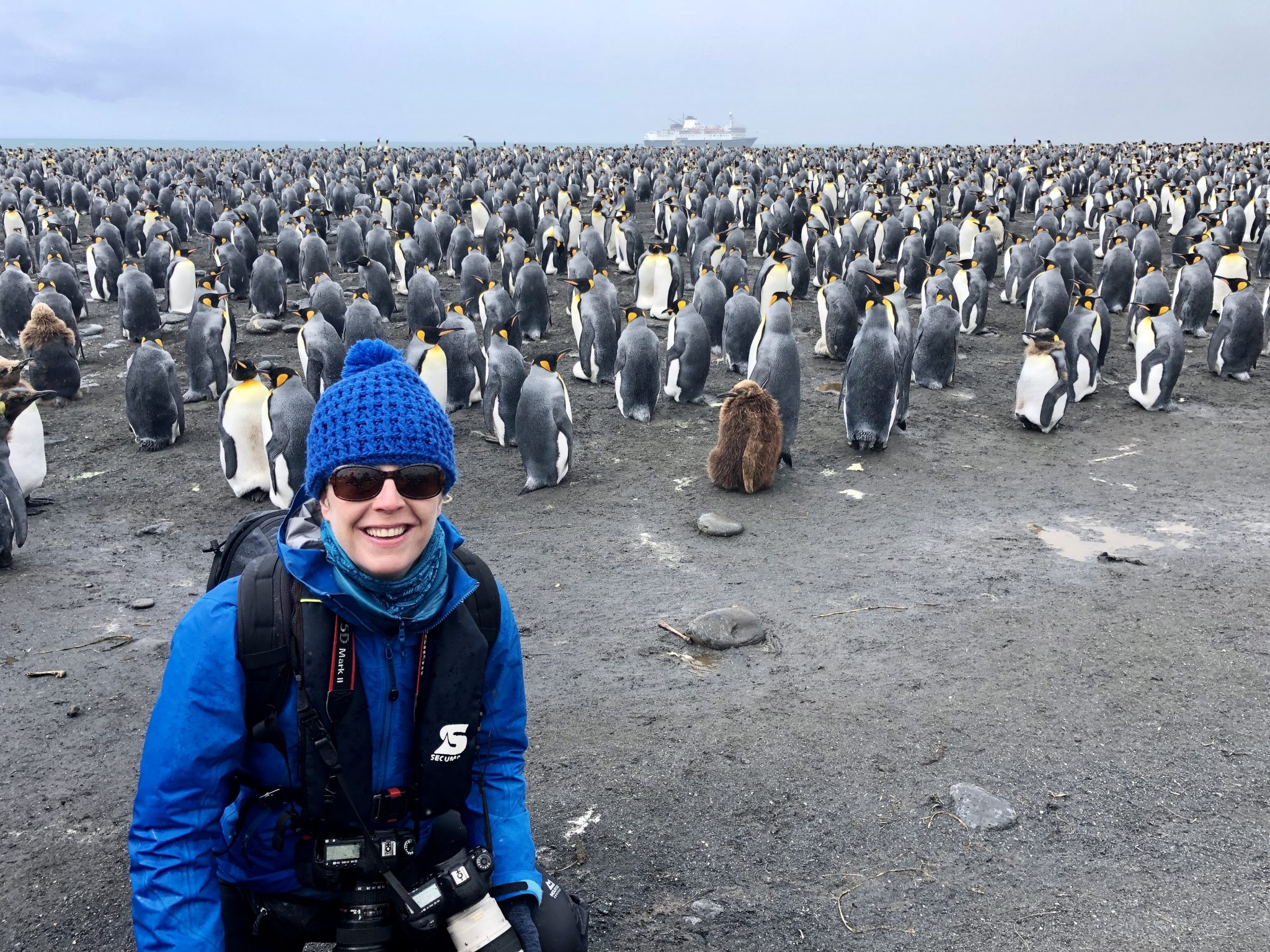 Photographer in front of a penguin colony on a visit to South Georgia Island