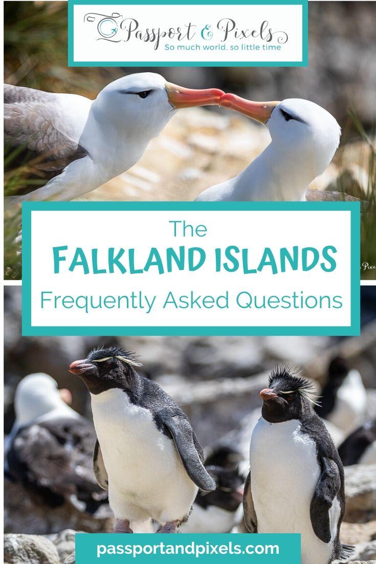 Falkland Islands FAQs Pinterest Pin