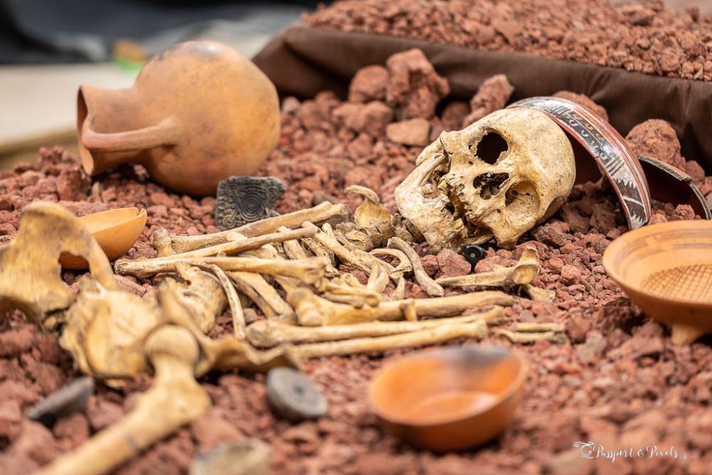 Skeleton of an Aztec warrior at found near Calixtlahuaca