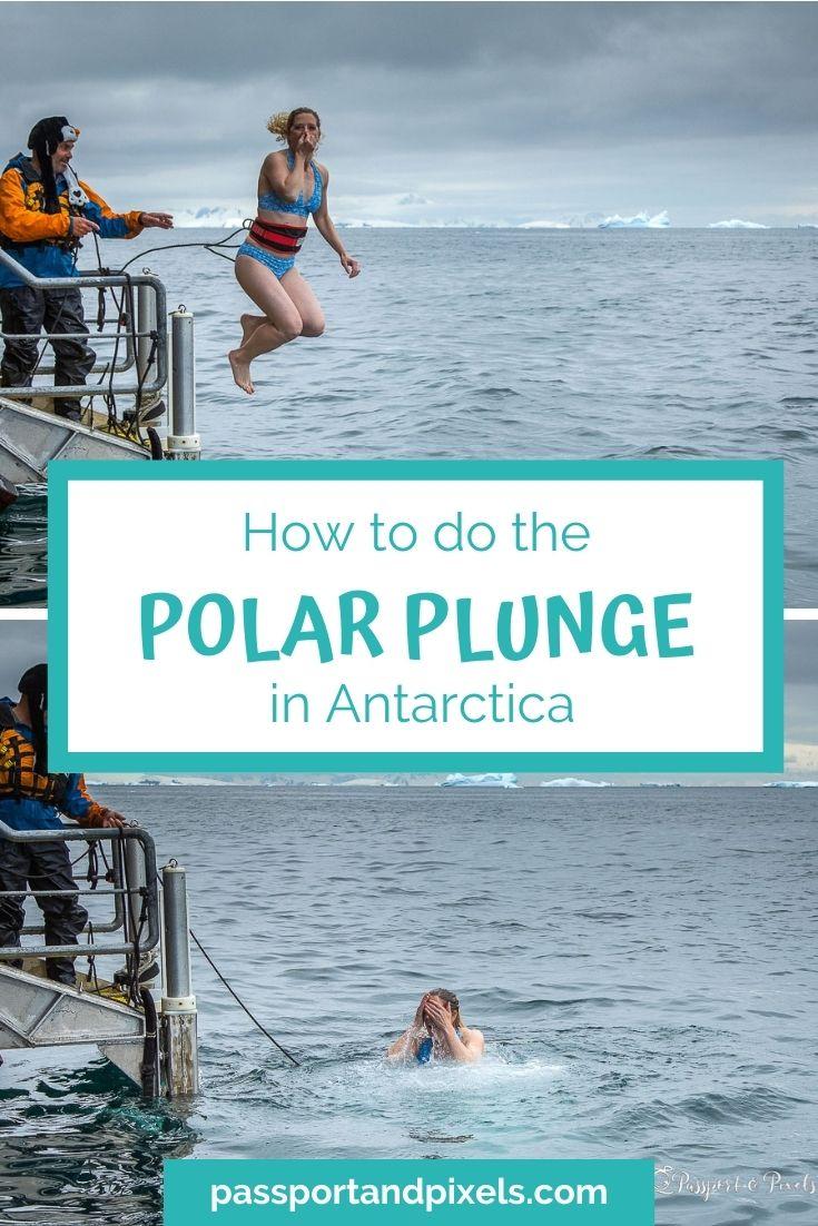 Polar Plunge Antarctica Pinterest Pin